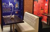 Matarghasti by Friends Cafe | EazyDiner