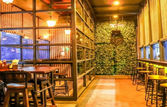 Green House - The Beer Garden | EazyDiner