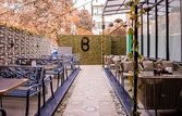 Bounce Lounge & Bar   EazyDiner